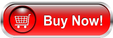 Image result for buy now button red
